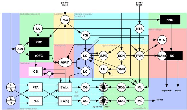 A Computational Model of Trust